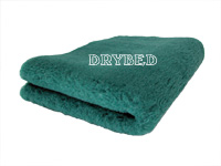 Tapis chien, Drybed